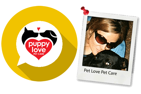 website testimonials pet love.fw  - Website Design Testimonials