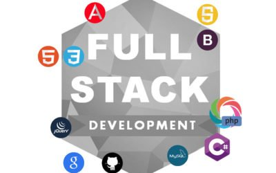 Full-stack website developer