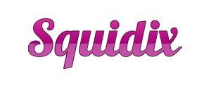 visualwebz renton wa 98058 seattle web design squidix - Best Web Hosting