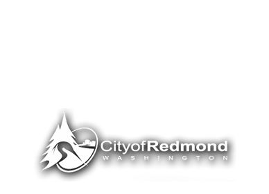 Redmond Website Design