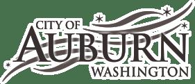 Auburn WA Web Design