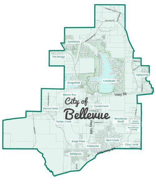 Bellevue website design