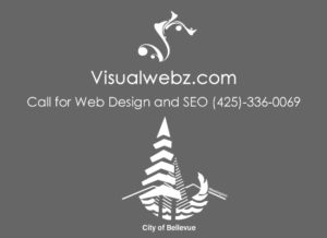 Bellevue website designer