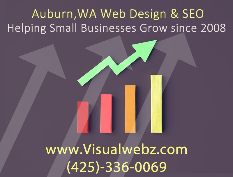 Auburn Web Design and SEO Company