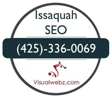 Issaquah SEO services by Visualwebz