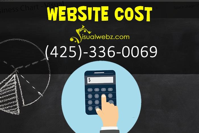 Website Cost for Web Design and SEO - Visualwebz com (425)-336-0069