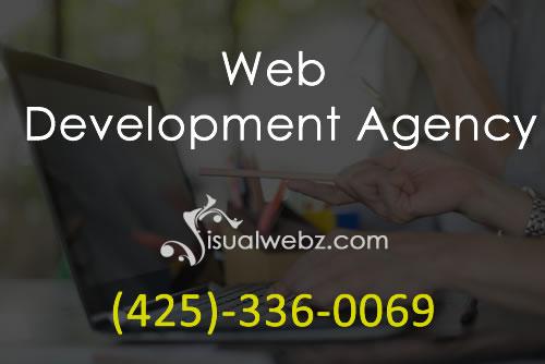 Web Development Agency Visualwebz LLC - Web Development Agency
