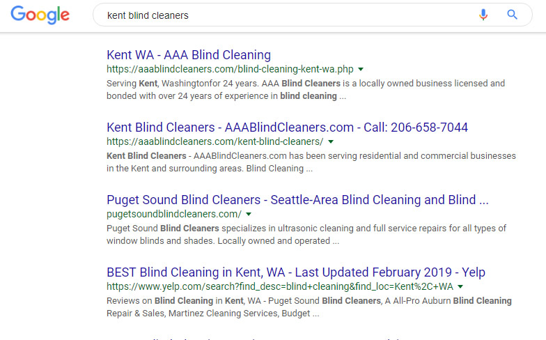 Seattle SEO Case Study 1 Visualwebz 1 - Seattle SEO Case Study #1