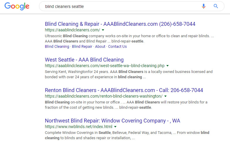 Seattle SEO Case Study 1 Visualwebz 3 - Seattle SEO Case Study #1