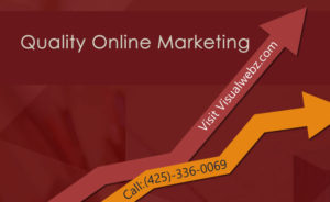 Seattle Web Design Online Marketing 300x184 - Seattle Small Business Website Design